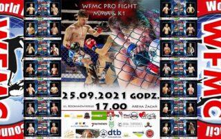 Plakat Gali sportów walki